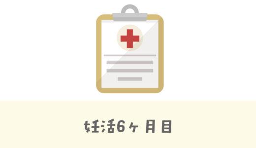 【妊活6ヶ月目】リセットしそう。。不妊治療の病院に検査予約を入れます。