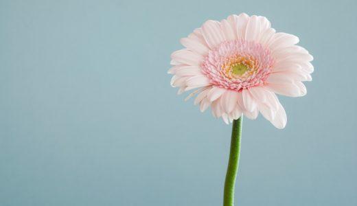 卵巣年齢(AMH)が若い私が20代からずっと続けてる4つの習慣